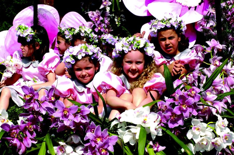 Fiesta de la Flor de Madeira 2013 Festa da Flor