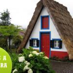 Viajes organizados a Madeira