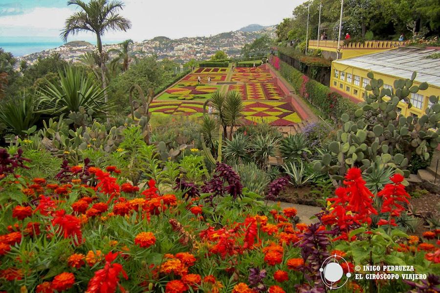 Parque botánico de Funchal. ©María Calvo.